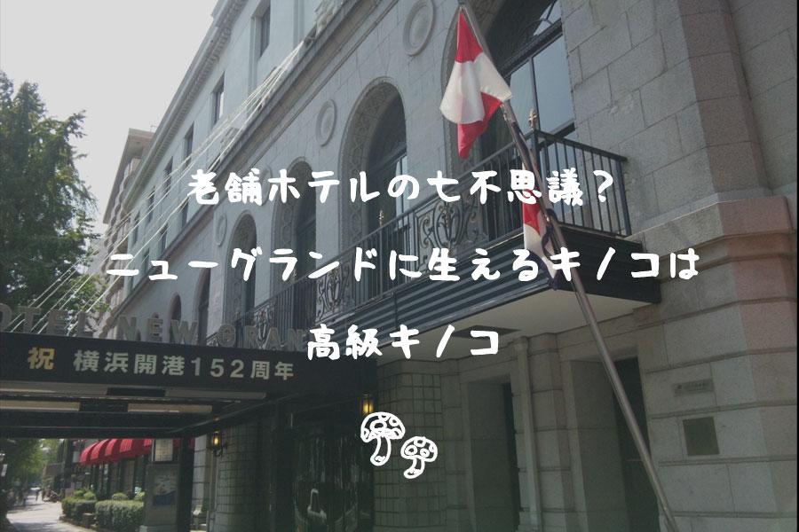 老舗ホテルの七不思議
